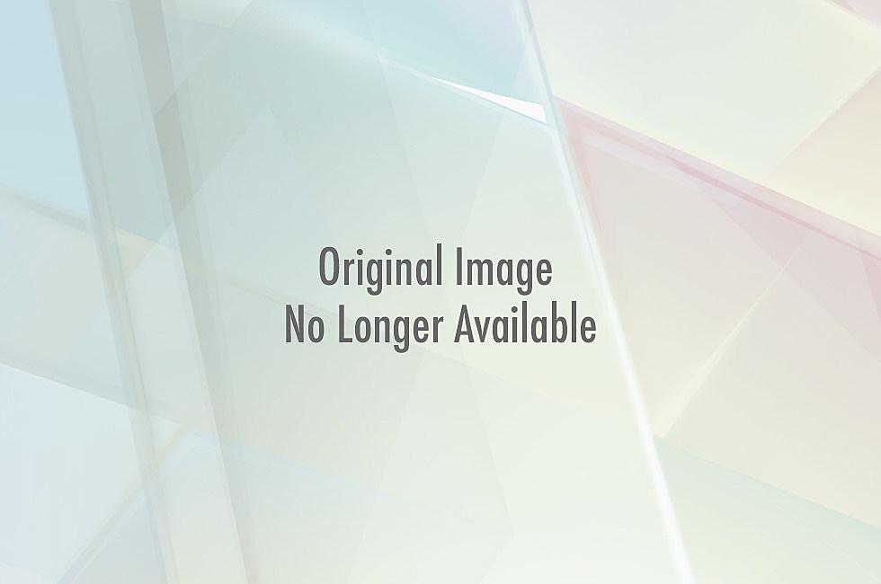 American Flag Bikini Album Cover