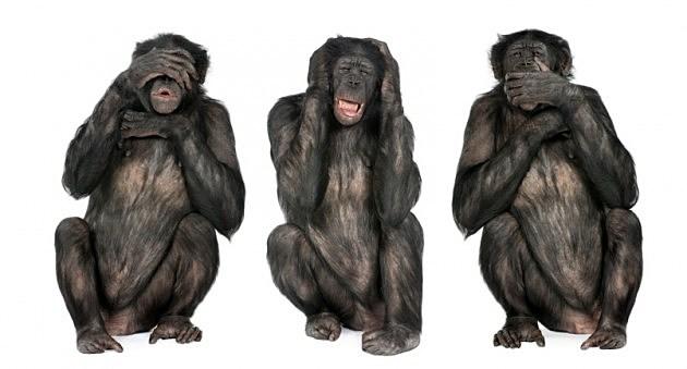 Tortura… pero con método Three-monkeys-istock-630x339